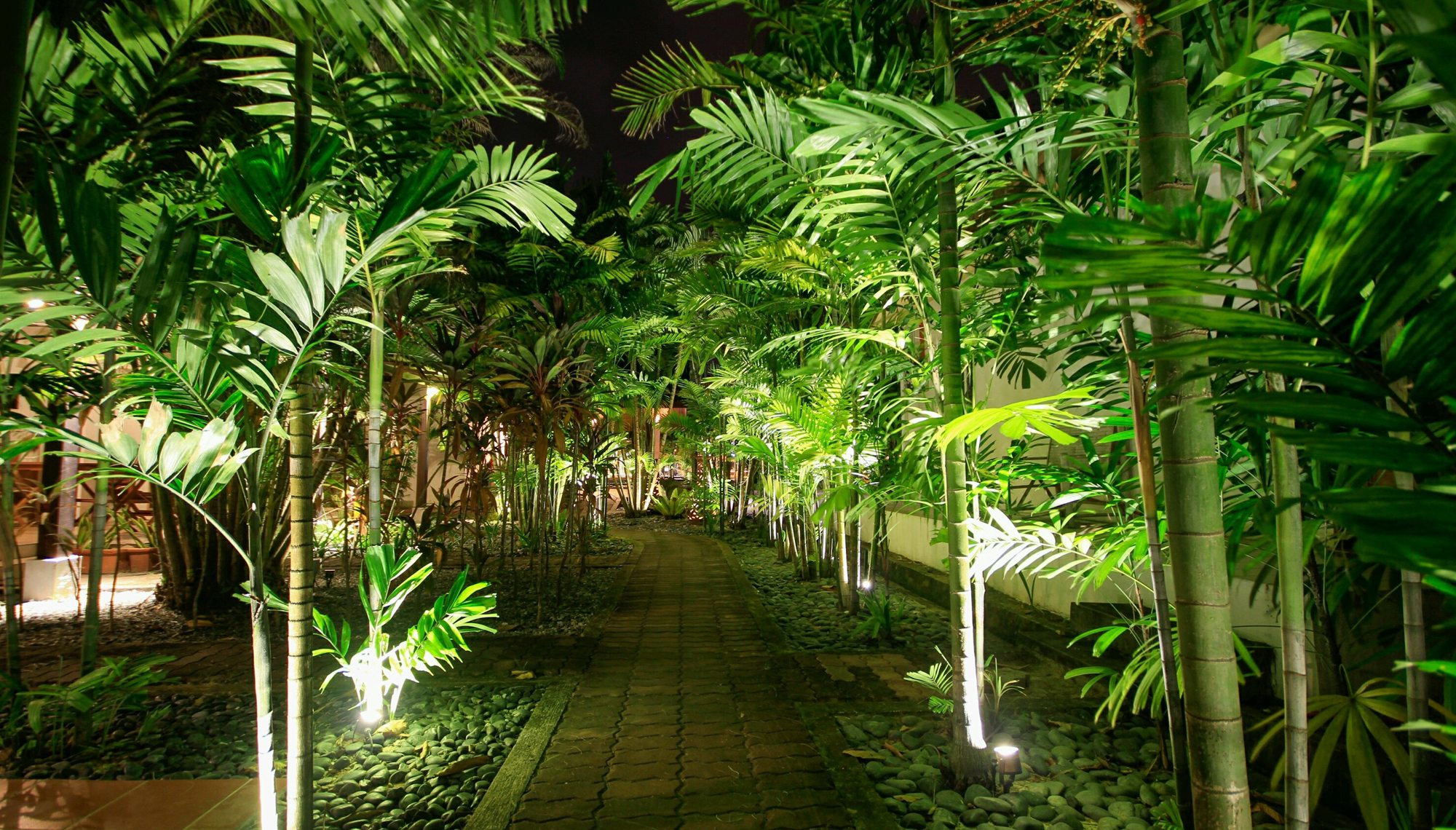 Palm Harbor Landscape Lighting