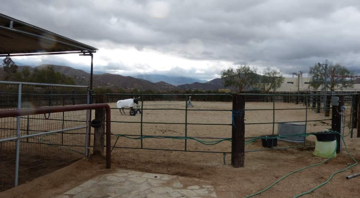 9034 Ranch