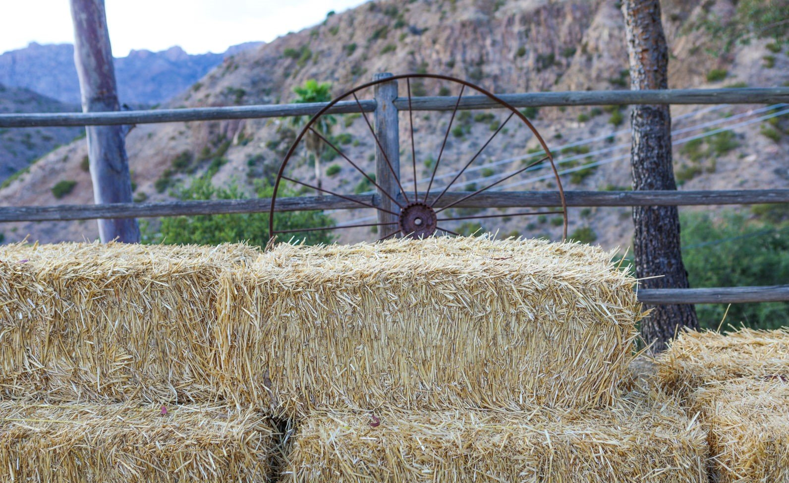 malibu-film-ranch-46
