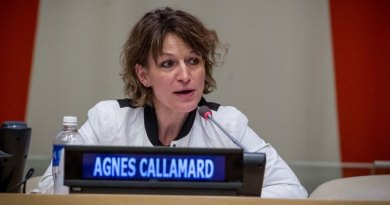 UN Indicts Nigeria Over Insecurity, Killings