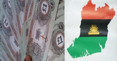 Biafra's currency, best option for the people of Southeast – Monarchs