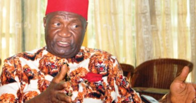 New Ohanaeze Ndigbo emerges, Nwodo out