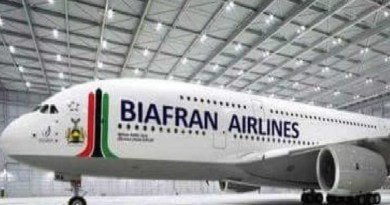 Just In: UN insists Biafra will fly in 2020