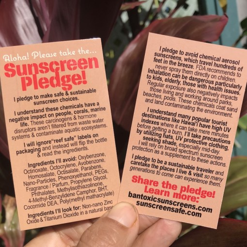 Safe Sunscreen Educational Cards