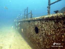 Sri Lanka Navy Dive Site Warships Trincomalee Karainagar (1)