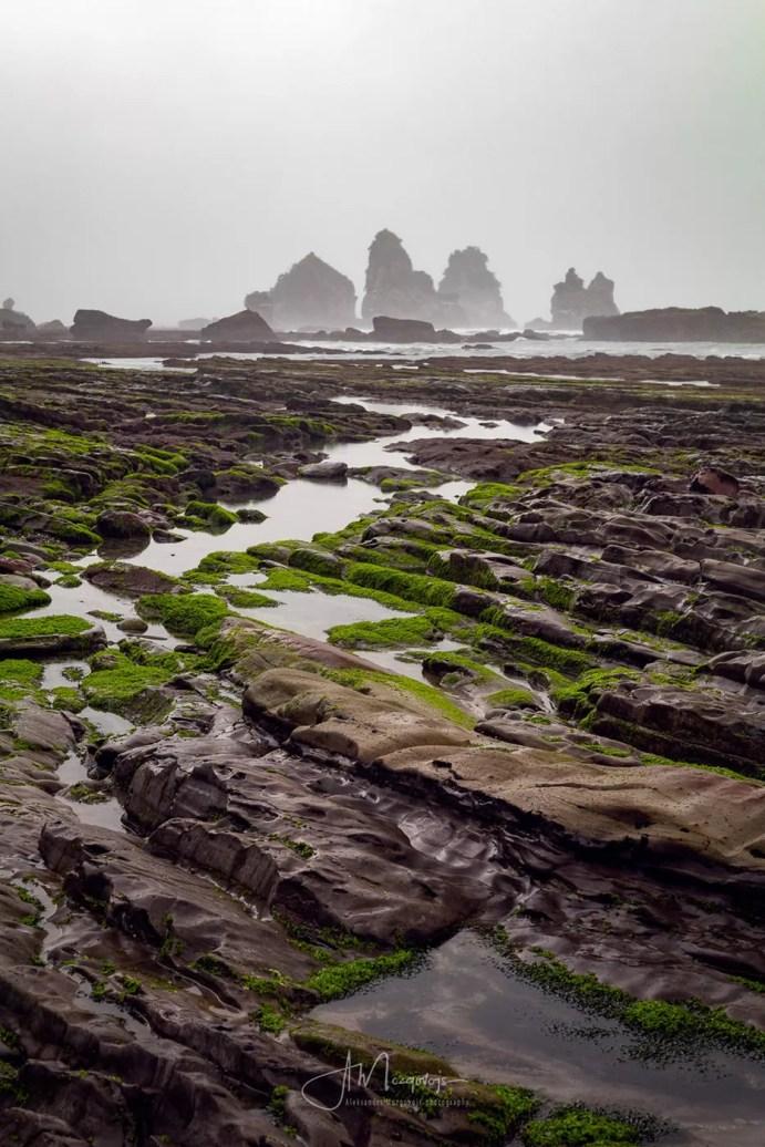 Motukiekie Beach during low tide