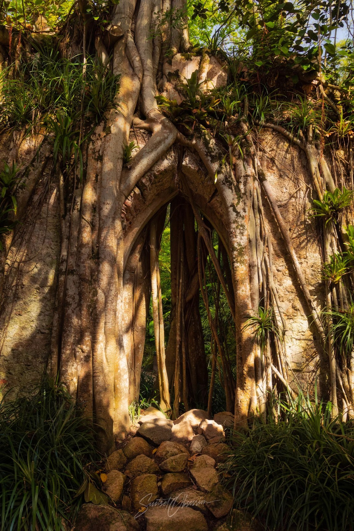 An old chapel ruins in Monserrate is a remarkable photo spot