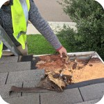Rotten plywood roof repair on 25 year shingles.