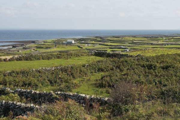 Islands of Ireland worth discovering