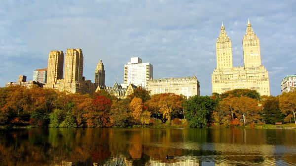 New York City tips - You must visit Central park