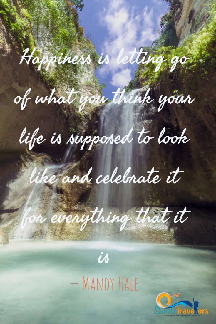 Happiness is letting go of what you think your life is supposed to look like and celebrate it for everything that it is. - Mandy Hale