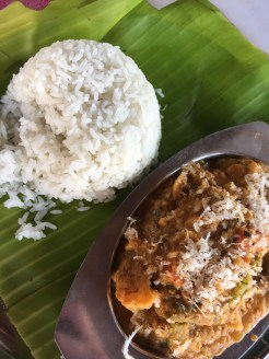 Coconut veg curry