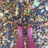 Links and Likes ~ October.