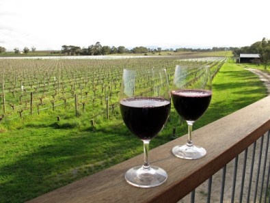 McLaren Vale; an ideal location for a cross-continental catch-up