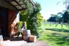 Witches Falls Winery, Tamborine
