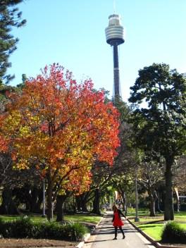 Wandering around Sydney