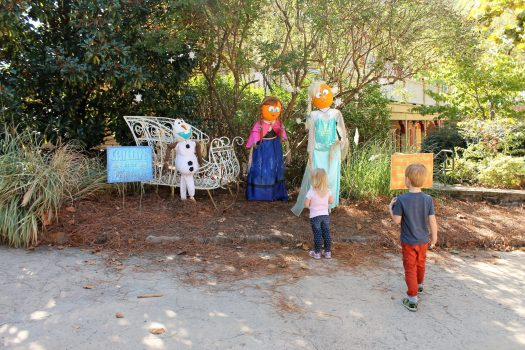 Pumpkin Palooza | sunshineandholly.com | stone mountain park