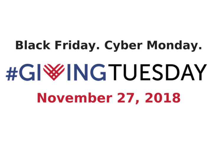 Join the Movement - Giving Tuesday | sunshineandholly.com | #givingtuesday