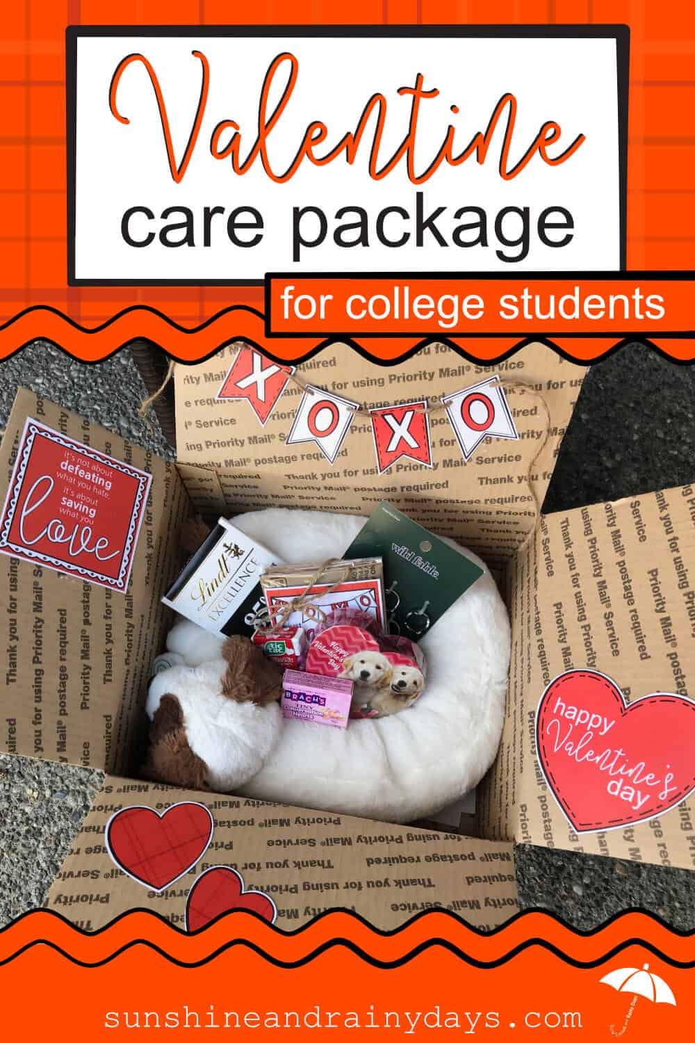 valentine care package for