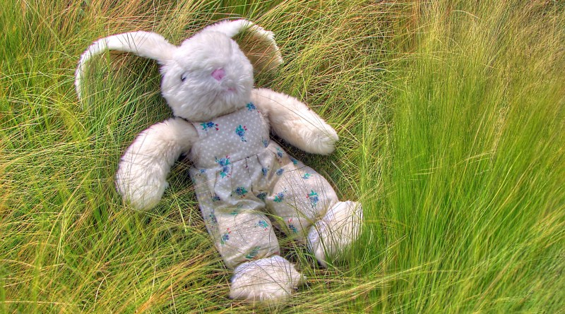 """04900 Toy Rabbit"" by © Nevit Dilmen. Licensed under CC BY-SA 3.0 via Wikimedia Commons (https://commons.wikimedia.org/wiki/File:04900_Toy_Rabbit.jpg#/media/File:04900_Toy_Rabbit.jpg)"