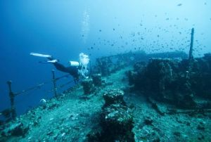 Fishing and Scuba Diving Charters