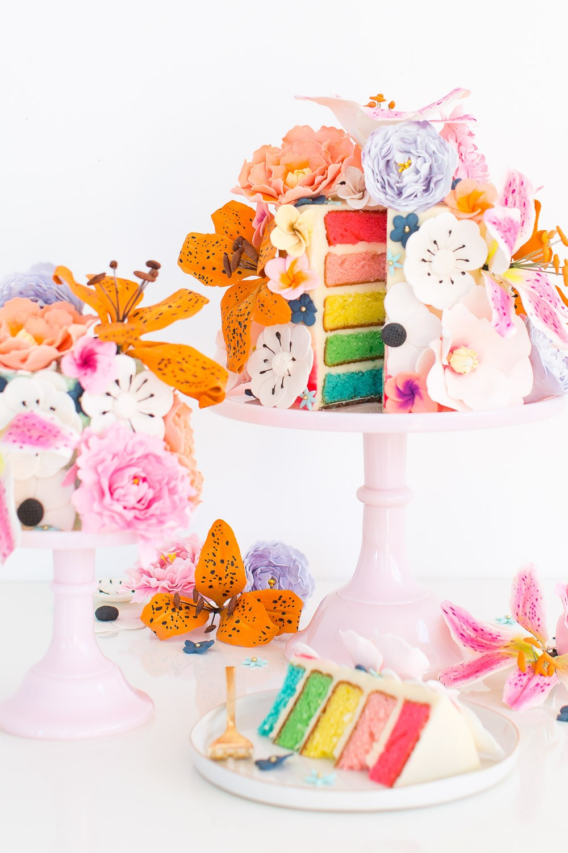 Rainbow Cake / Modern Daydream Living