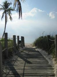 Beach - by Renee Homan Heath