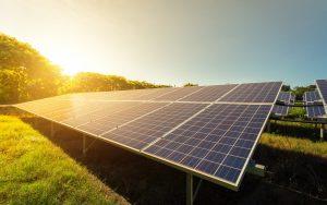 Solar Panel Farm Instal Texas