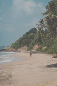 Sri Lanka-Surf-Medawatta-Dondra-Harbour-Tuna-Yellow-Fin-Sushi-Sashimi-Fresh-Burgers-Zephyr-Mirissa-IMG_4632