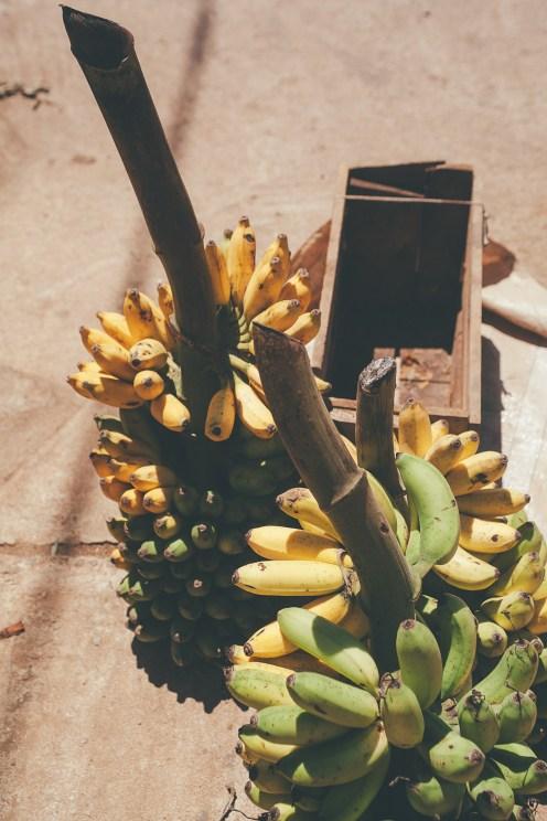 Market day in Ahangama, Sri Lanka