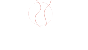 Dr Hugo Pin Logo Footer