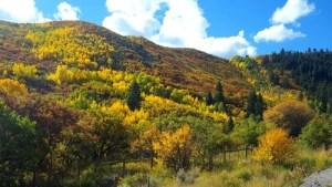 Sunlight Mountain Resort in Fall