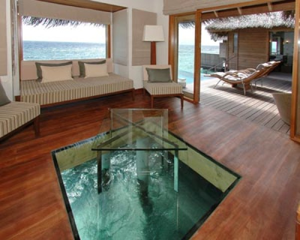 LUXURY HOTELS AND RESORTS IN THE MALDIVES huvafen fushi glass bottom living room