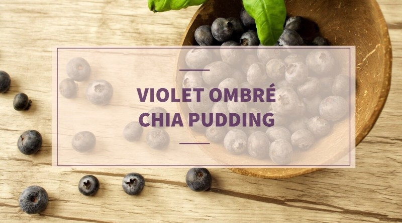 vioet ombre chia pudding with maqui