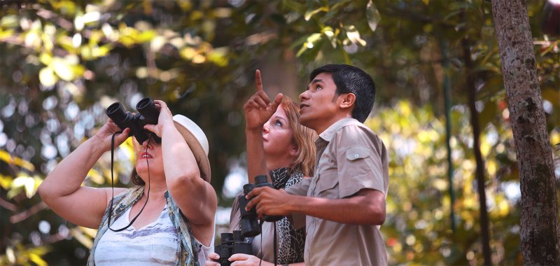 bird watching with binoculars guided by naturalist