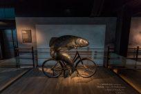 A metal fish riding a bicycle