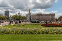 Buckingham Palace from across the park, blue skies with a few clouds around