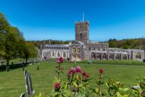 St Davids cathedral in the background and a vibrant pink flower in the foreground.