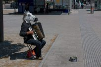 Busked playing an accordion with a horse head on