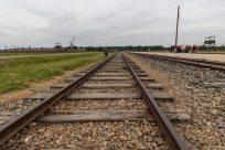 Train tracks to Birkenau