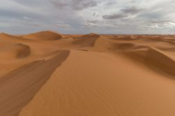 Dunes of the Sahara Desert