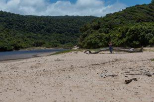 Deserted beach, Tegan sitting on the log
