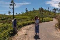 Tegs standing amongst the tea plantation with a tea worker walking by