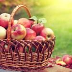 DUREREA DE SPATE: 15 remedii naturiste EXTREM DE EFICIENTE pe care le avem la indemana
