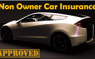 Best Car Insurance Policies For Non-Owners