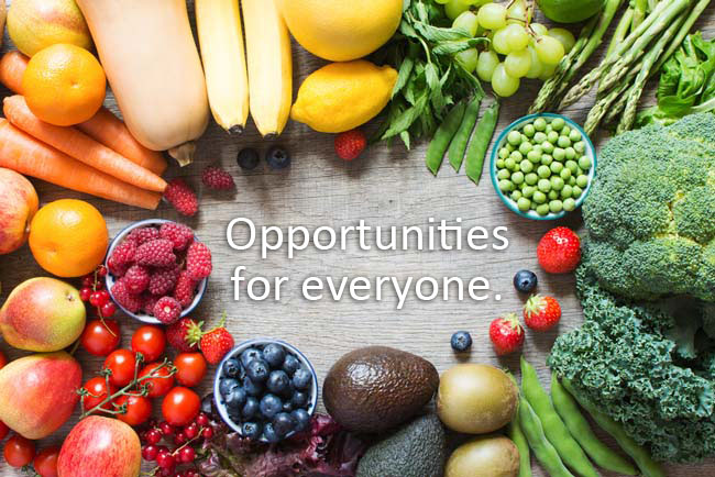 List of Top Vegan Scholarships and Grants Just for You...