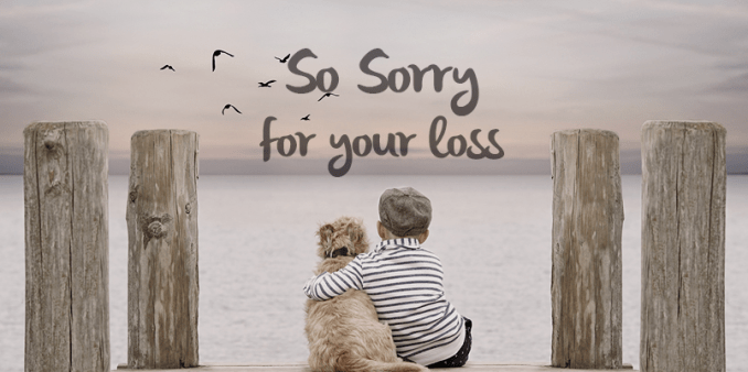 I am truly sorry for your loss.