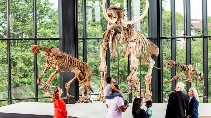 Free Museums in Seattle