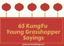 KungFu Young Grasshopper Sayings