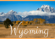 Wyoming EBT Card